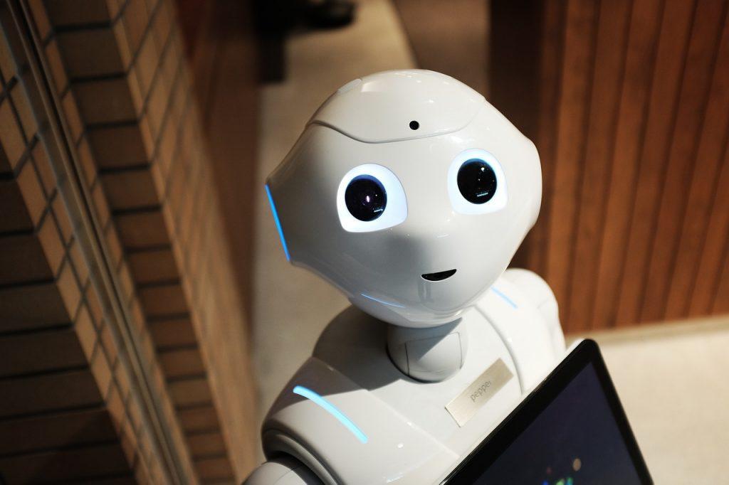Robot domestique : mettre les robots à son service